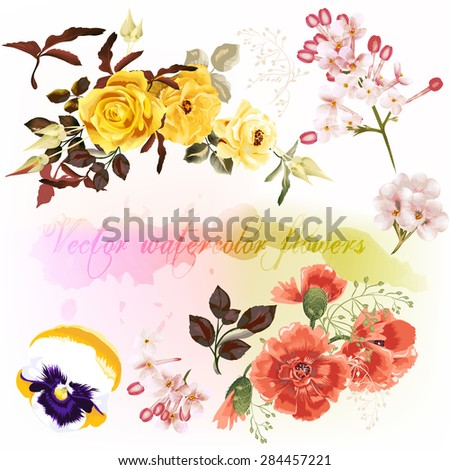 Colorful vector set of detailed flowers imitation of watercolor - stock vector