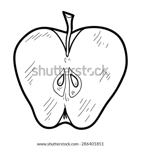 Apple Zentangle Pattern Coloring Book Vector Stock