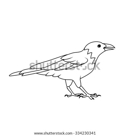 Coloring book: Crow or Raven - stock vector