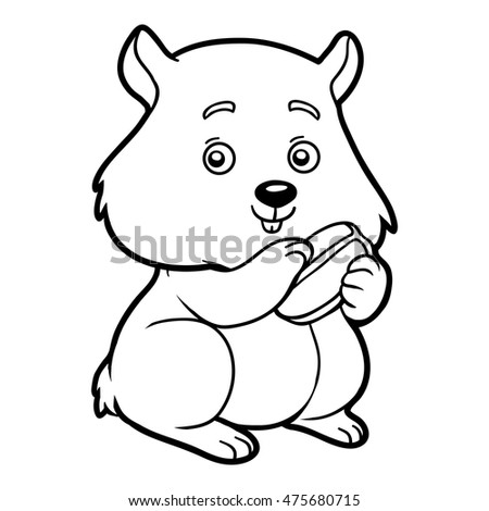 Coloring book children hamster stock illustration for Hamster coloring pages printable