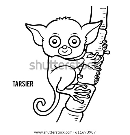 Coloring Book For Children Tarsier