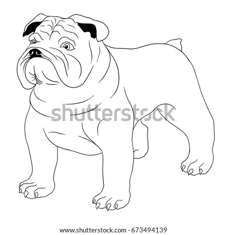 Coloring Book For Children With Bulldog Dog Isolated On White Background