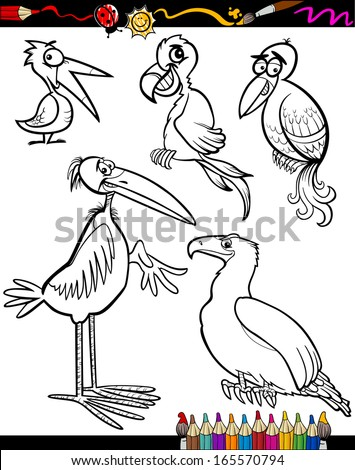 Coloring Book Or Page Cartoon Vector Illustration Set Of Black And White Birds Animals Mascot Characters
