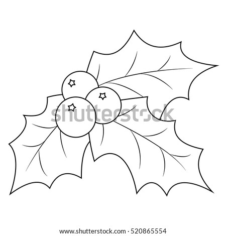 holly leaves coloring pages - photo#19