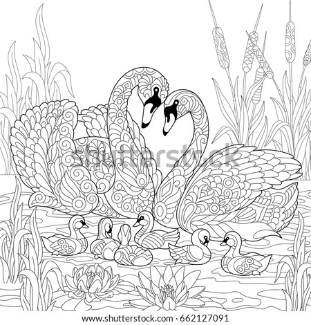 coloring book page of swan birds family lotus flowers and reed grass freehand sketch - Colouring Book Pages