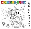 Coloring book with bunny in basket - vector illustration. - stock photo