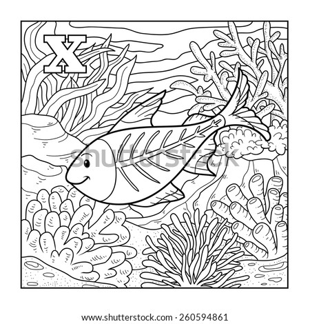 Coloring book (x-ray fish), colorless illustration (letter X)  - stock vector
