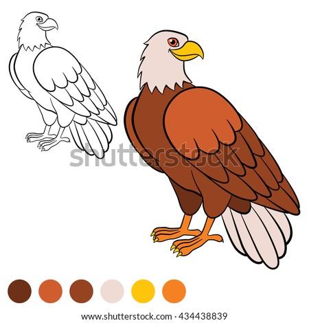 falcon cartoon stock images royaltyfree images amp vectors