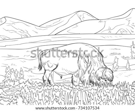 Coloring Page For Adults And Children A Cute Landscape With Mountains Line Art Style Illustration