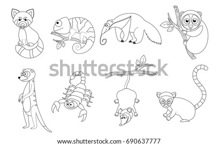 Coloring Page For Preschool Children Set Of Different Cartoon Exotic Animals Funny