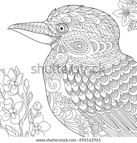 Coloring Page Of Australian Kookaburra Bird Freehand Sketch Drawing For Adult Antistress Book In