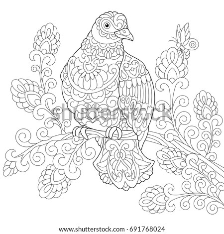 Coloring Page Dove Pigeon Bird Freehand Stock Vector 691768024