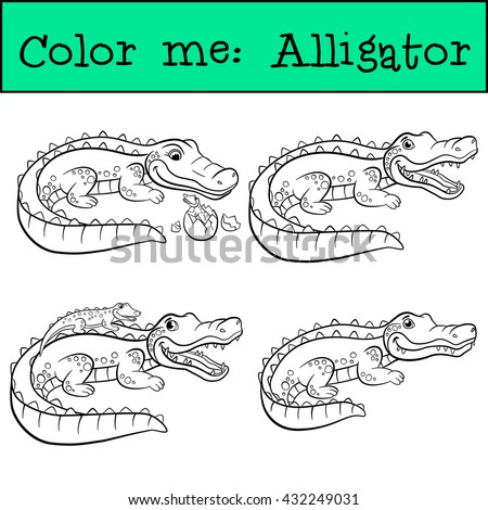 Alligator stock images royalty free images vectors for Baby alligator coloring pages