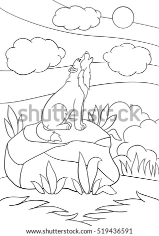 Coloring Pages Cute Beautiful Wolf Sits On The Stone And Howling