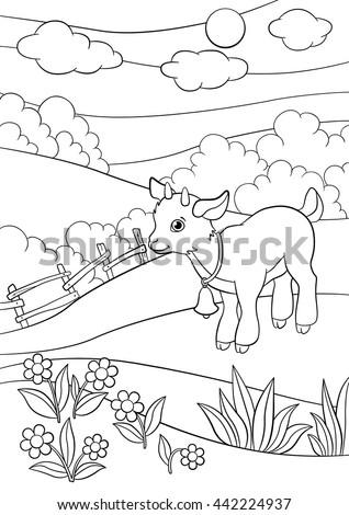 coloring pages farm animals little cute goatling stands on the field smiles he - Coloring Pages Farm