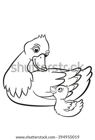 Coloring pages. Kind duck and little cute duckling swim on the pond.