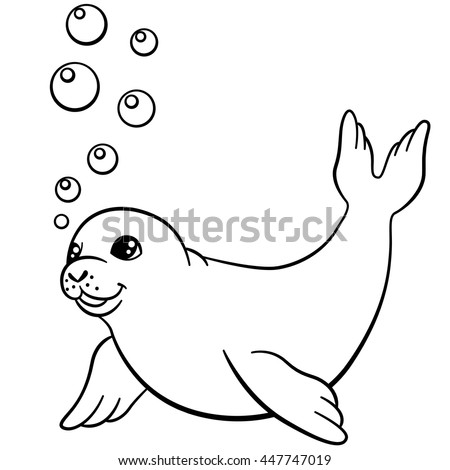 how to draw a cute seal pup