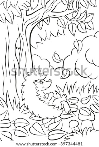 Fall page stock images royalty free images vectors for Coloring page fall