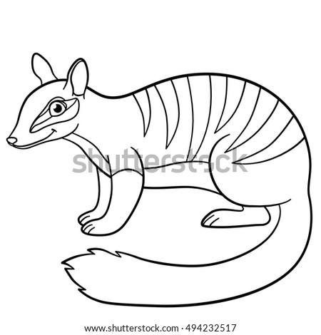 Coloring Pages. Little Cute Numbat Stands And Smiles.