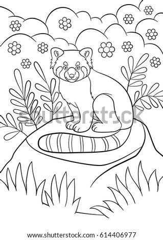 coloring pages little cute red panda sits on the stone in the forest and smiles
