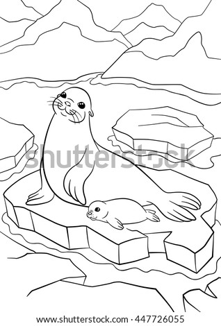 Coloring pages. Mother seal with her little cute baby on the ice floe in the ocean.
