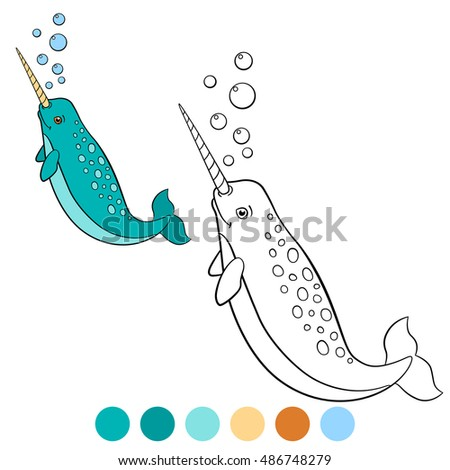 Narwhal Template Stock Images