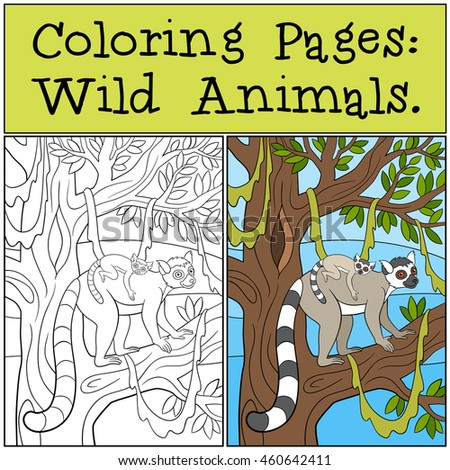 Coloring Pages: Wild Animals. Mother lemur stands on the tree branch with her little cute baby and smiles.