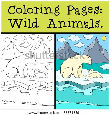 Coloring Pages Wild Animals Mother Polar Bear Sits On The Ice Floe With
