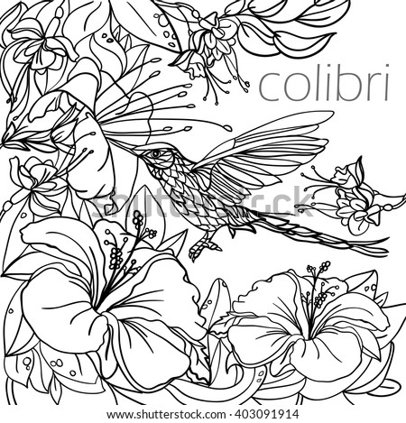Coloring Pages Tropical Birds Flowers