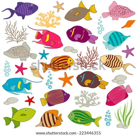 Colourful Fish - stock vector