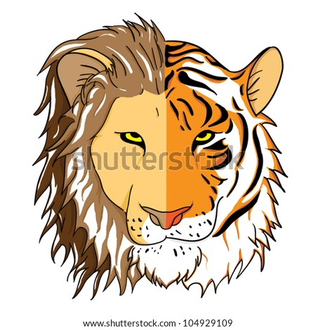 Combined faces of lion and tiger. - stock vector