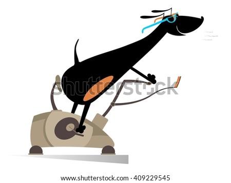Comic dog trains on exercise bike - stock vector