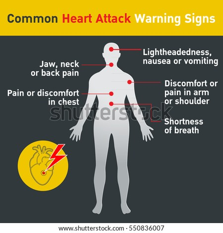 Common heart attack warning signs vector stock vector 2018 common heart attack warning signs vector design ccuart Choice Image