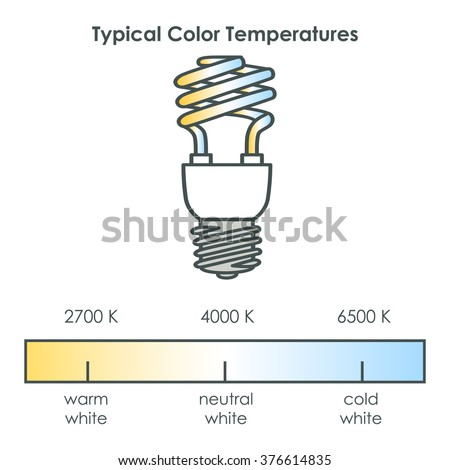 Compact fluorescent light bulb with typical color temperatures. Vector illustration. - stock vector