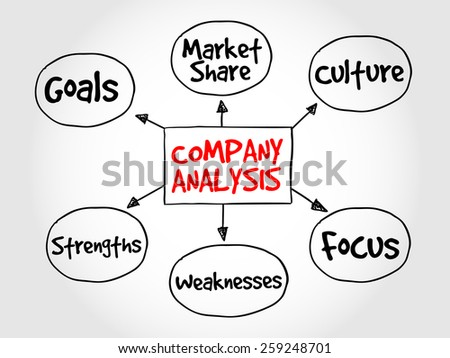 Company analysis mind map business concept - stock vector