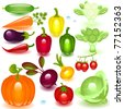 complete set vegetable on a white background - stock vector