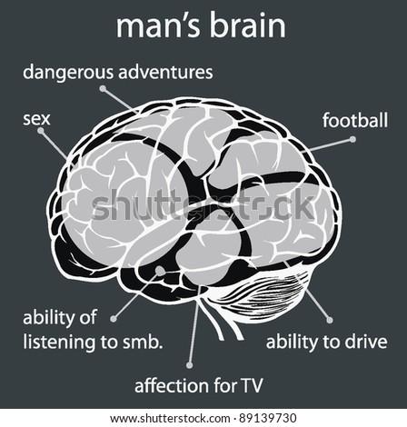 concept man's brain - stock vector