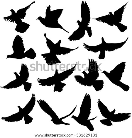 Concept of love or peace. Set of silhouettes of doves. Vector illustration. - stock vector