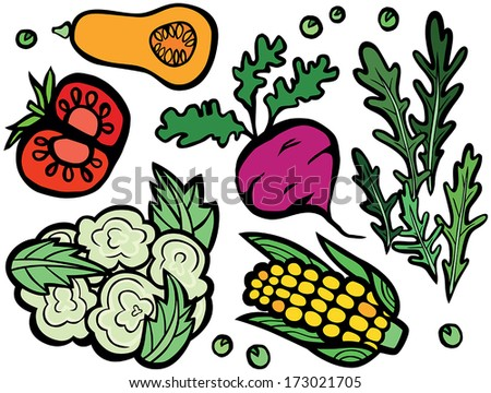 Cool Healthy Vegetable Set: Beetroot, Corn Cob, Tomato, Butternut Squash, Cauliflower, Rocket and Peas - stock vector