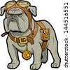 Cool Tough Steampunk Bulldog with Goggles and Pocket Watch - stock
