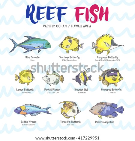 Lemon butterfly fish stock images royalty free images for Hawaiian fish names