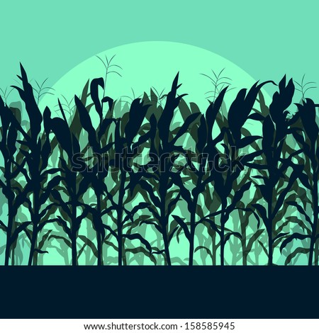 Corn field detailed countryside landscape illustration background vector in moonlight - stock vector