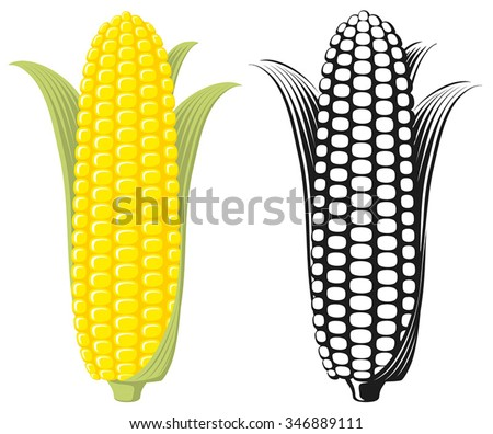 Corn on the Cob / Sweetcorn with leaves, flat graphic vector illustration. Colour and Black & White. Fully adjustable & scalable. - stock vector
