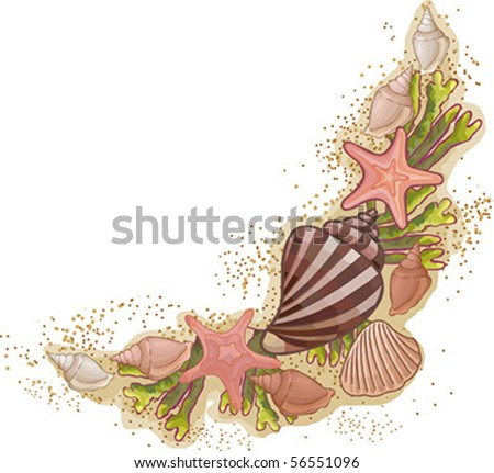 corner pattern from seashells and starfish isolated on white background