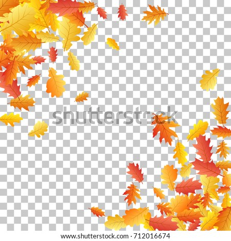 Corners Of Oak Leaf Vector Frame Or Border Illustration With Transparent Background Autumn Foliage