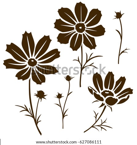 Cosmos Flower Silhouette Vector Illustration Decorative