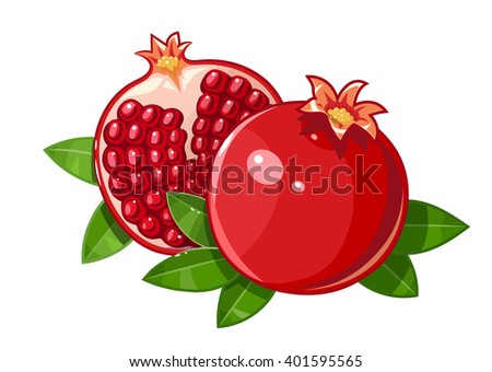 Couple juicy ripe pomegranate fruit whith leaf vector illustration. Isolated white background. Red pomegranate. Cutting pomegranate. Fresh pomegranate