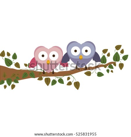 couple owls holding wings on branch with creeper