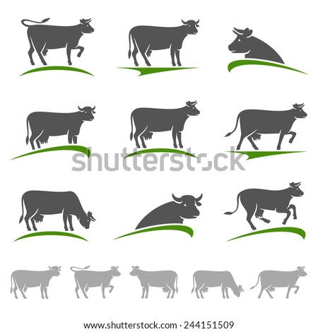 Cow set. Vector - stock vector