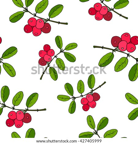 Cowberry seamless pattern. Vector illustration